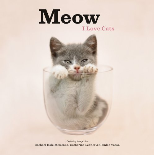 Meow: I Love Cats 9781452101699