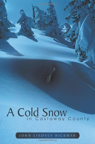 A Cold Snow in Castaway County 9781467048804