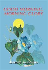 Good Morning, Morning Glory 19336380