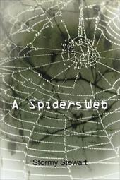 A Spiders Web 18820566