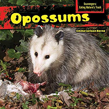 Opossums (Scavengers: Eating Nature's Trash)