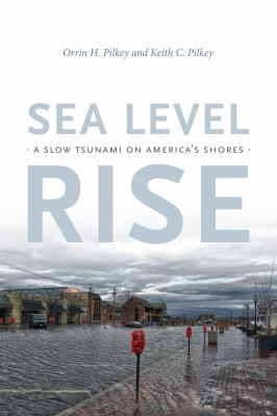 Sea Level Rise: A Slow Tsunami on America's Shores
