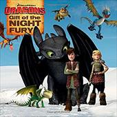 Gift of the Night Fury (How to Train Your Dragon TV) 22581094