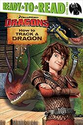 How to Track a Dragon (How to Train Your Dragon TV) 23358218