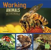 Working Animals of the World (All About Animals) 23712646