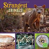 The Strangest Animals in the World (All About Animals) 22878543