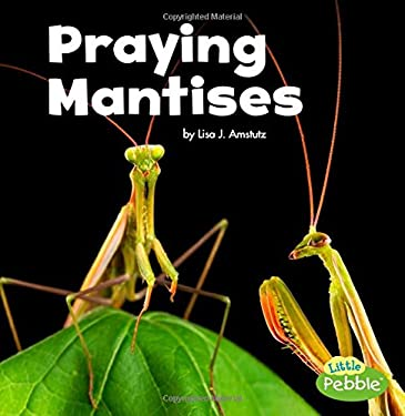 Praying Mantises (Little Critters)