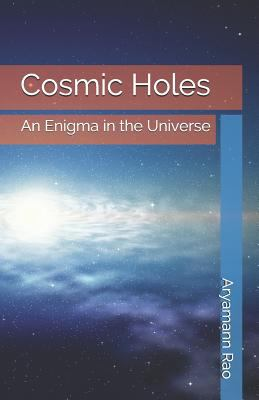 Cosmic Holes: An Enigma in the Universe