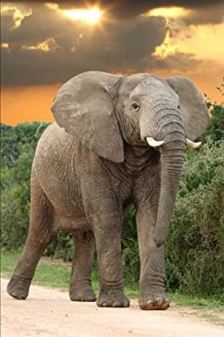 African Elephant Journal: 150 page lined notebook/diary