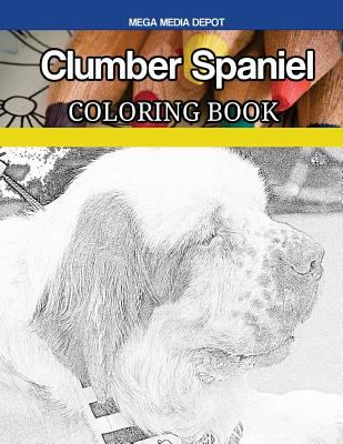 Clumber Spaniel Coloring Book