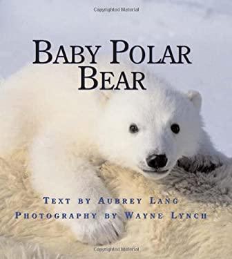 Baby Polar Bear 9781554551019