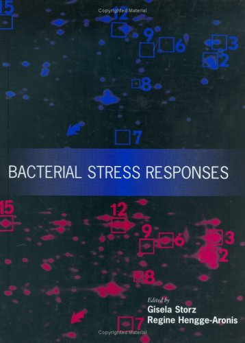 Bacterial Stress Responses 9781555811921