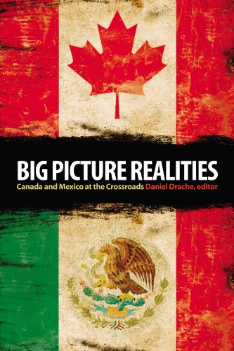 Big Picture Realities: Canada and Mexico at the Crossroads 9781554580453