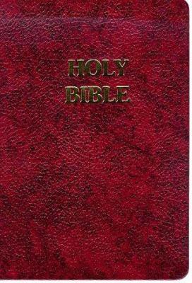 Fireside Study Bible-Nab 9781556654206