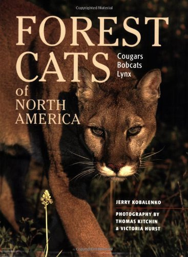 Forest Cats of North America 9781552091722