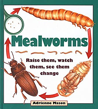 Mealworms: Raise Them, Watch Them, See Them Change 9781550745061