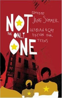 Not the Only One: Lesbian and Gay Fiction for Teens 9781555838348