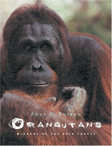 Orangutans: Wizards of the Rain Forest 9781552094532