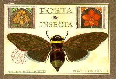 Posta Insecta - Postcard Book 9781556705274