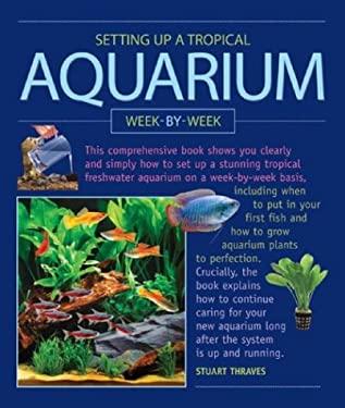 Setting Up a Tropical Aquarium Week by Week
