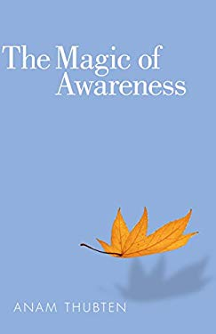 The Magic of Awareness 9781559393928