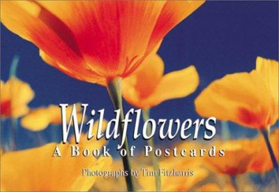 Wildflowers: A Book of Postcards 9781552093122