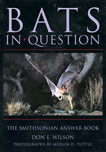 Bats in Question: Bats in Question 9781560987390
