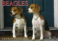 Beagles Postcard Book 9781563139116