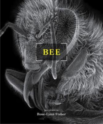 Bee 9781568989440