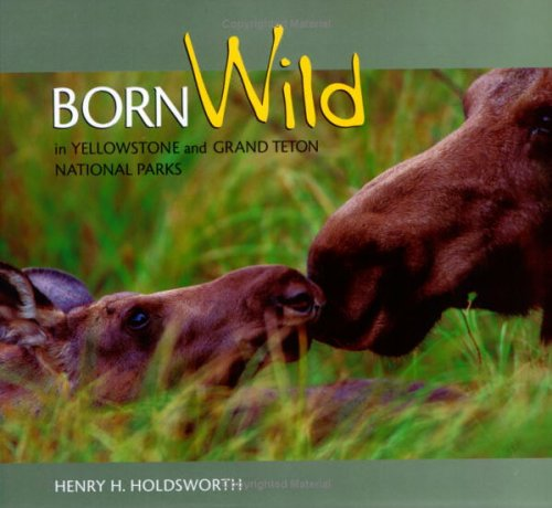 Born Wild in Y'Stone & Grand Teton 9781560372455
