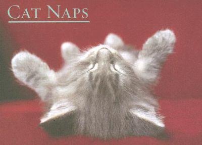 Cat Naps 9781569067956
