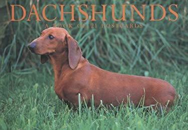Dachshunds Postcard Book