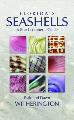 Florida's Seashells: A Beachcomber's Guide 9781561643875