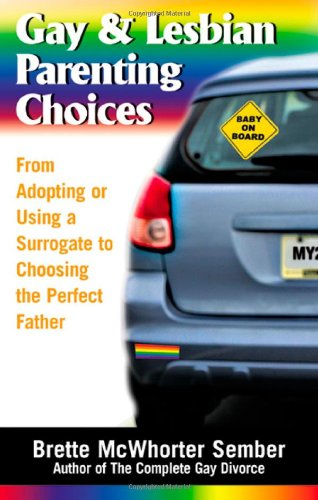 Gay & Lesbian Parenting Choices: From Adoptions or Using a Surrogate to Choosing the Perfect Father 9781564148377