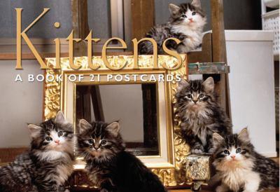 Kittens Postcard Book