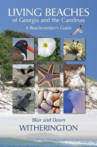 Living Beaches of Georgia and the Carolinas: A Beachcomber's Guide 9781561644902