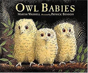 Owl Babies 9781564029652