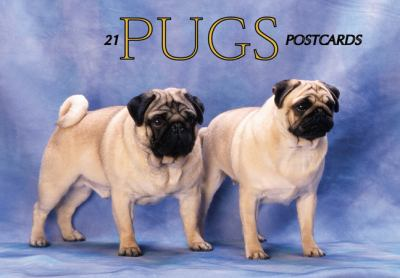 Pugs Postcard Book