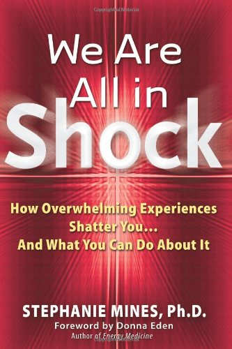 We Are All in Shock: How Overwhelming Experiences Shatter You and What You Can Do about It 9781564146571