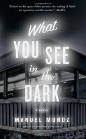 What You See in the Dark 10866746