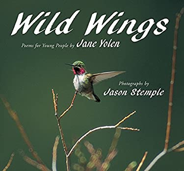 Wild Wings 9781563979040