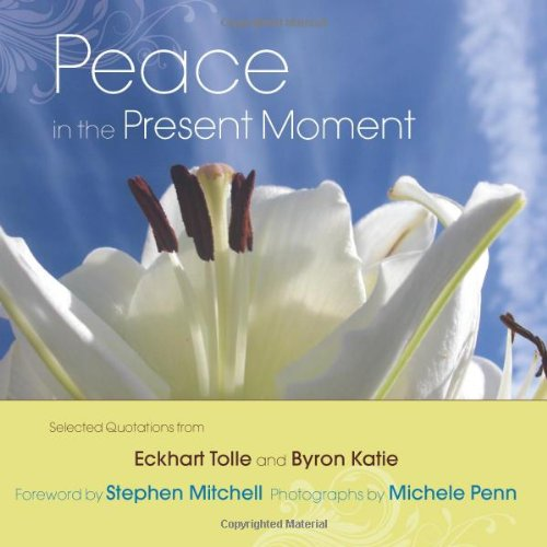 Peace in the Present Moment 9781571746436