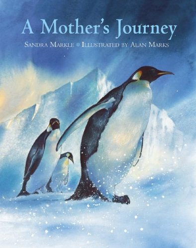 A Mother's Journey 9781570916229