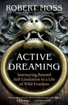 Active Dreaming: Journeying Beyond Self-Limitation to a Life of Wild Freedom 9781577319641