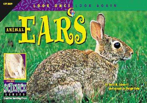 Animal Ears 9781574713206