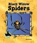 Black Widow Spiders 9781577657286