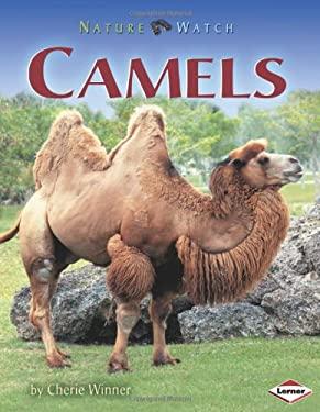 Camels 9781575058702