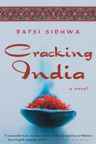 Cracking India 9781571310484