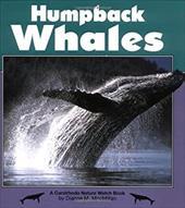 Humpback Whales 7093666