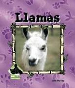 Llamas 9781577657248